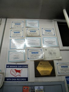 Awards that the Erbs have won for their herd.