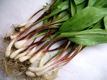 Local Ramps