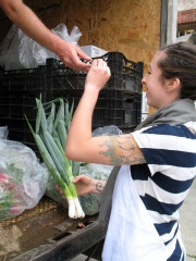 Sparrow Arc Farm - Matt Handing Me Some Green Onion to Try
