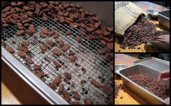 Mast Brothers - Cacao Beans Being Sifted