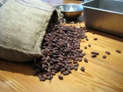 Mast Brothers - Cacao Beans Spilling Out of Bag