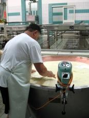 Testing Parmigiano Reggiano Curds