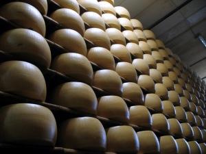 Wheels of Parmigiano Reggiano Aging