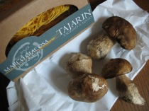 Marco Giacosa Tajarin with Porcini Mushrooms