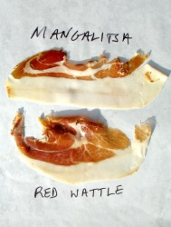 Slices of Mangalitsa and Red Wattle Hams
