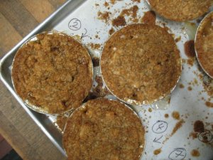 Apple Crisps Just Out of the Oven
