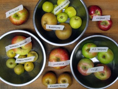 Ten Apple Varieties