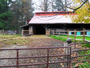 Rawson Brook Farm