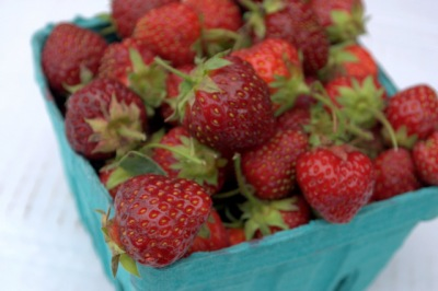 Red Fire Farm Strawberries