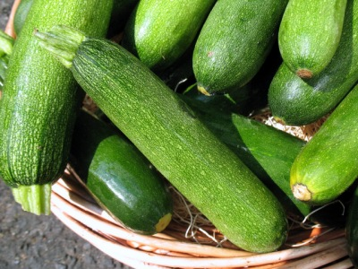 Zucchini - Red Fire Farm