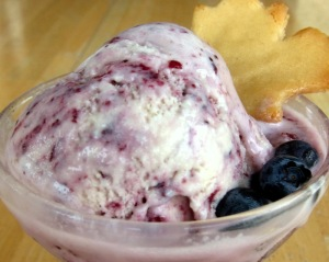 Blueberry Pancake Ice Cream