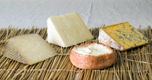Global Cheese Sampler