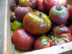 Heirloom Tomatoes - Red Fire Farm