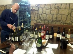Tasting Mottura Wines